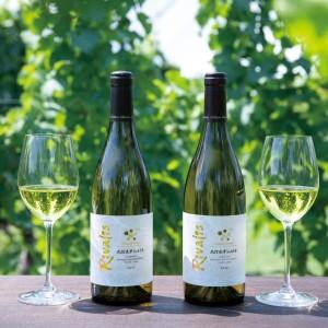 1DAYイベント ワイン&ディナーブッフェ「シャトーメルシャンVS世界のワイン」