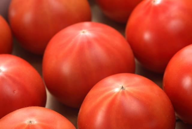 【トマト】
