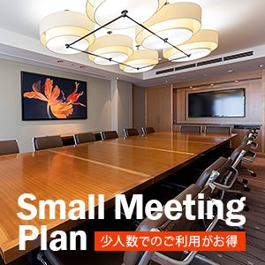 Small Meeting Plan